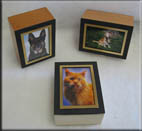 Picture_Frame name=
